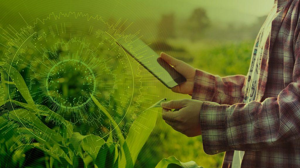 capa-homem com tablet na mão verificando plantação