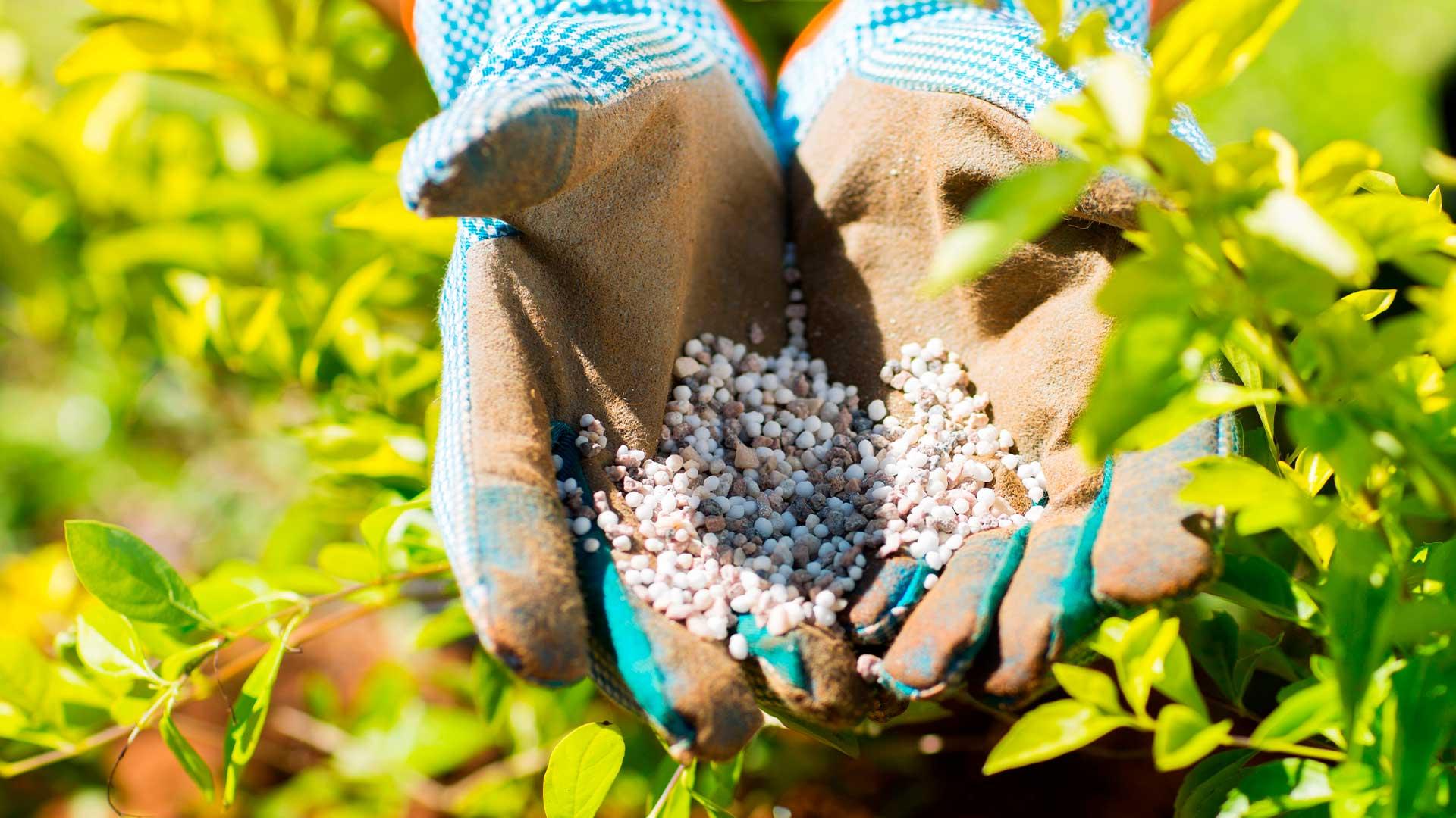 Entendendo a qualidade dos fertilizantes