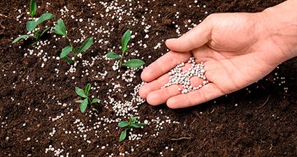 Calcular a quantidade de corretivos e fertilizantes