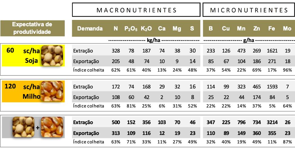 tabela de macronutrientes e micronutrientes