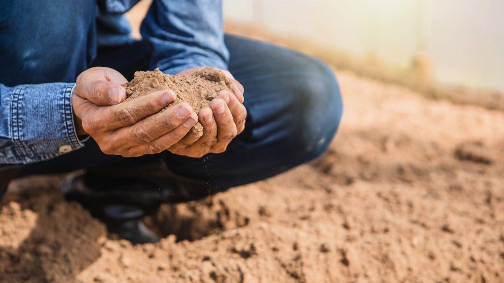 imagem homem do campo segurando porção de solo - latossolo