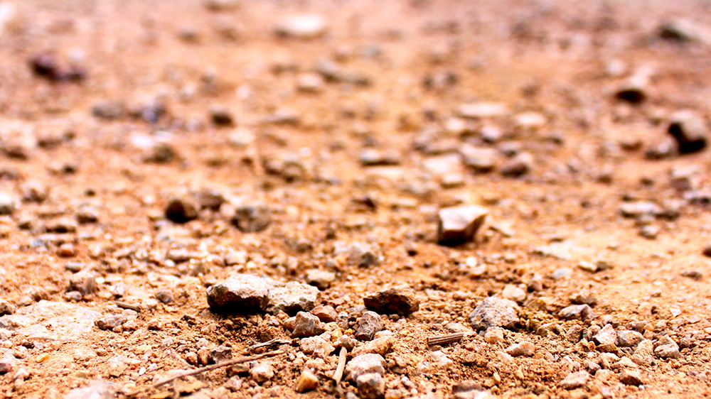 imagem de solo plintossolo