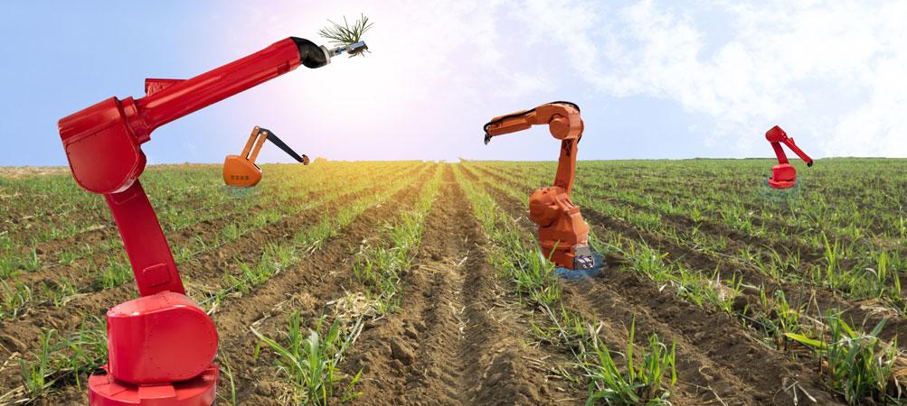 Uso de robôs e inteligência artificial