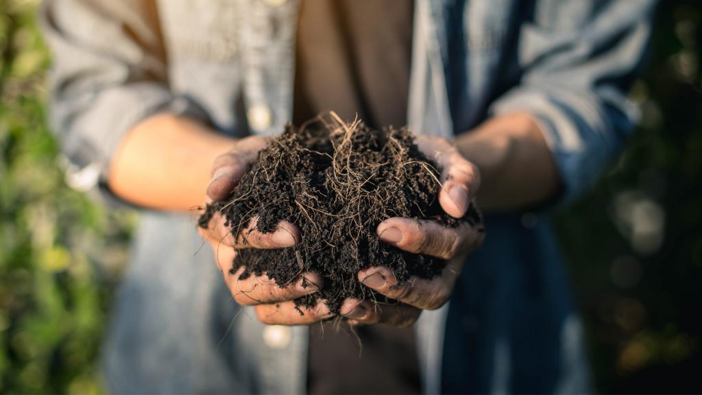 pessoa do campo segurando um pouco de solo