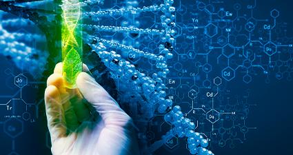 Biotecnologia: Tecnologias de aprimoramento genético que reflete em cultivos altamente produtivos e sustentáveis