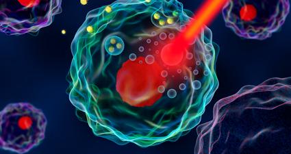 NIRs- Near Infrared Espectrocopy