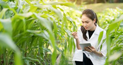 Monitoramento das atividades e testes de biossegurança