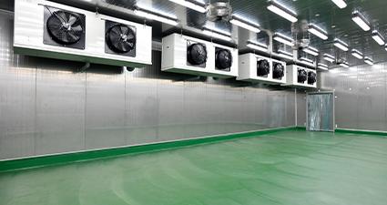 depósito com ventiladores para melhor armazenamento das sementes