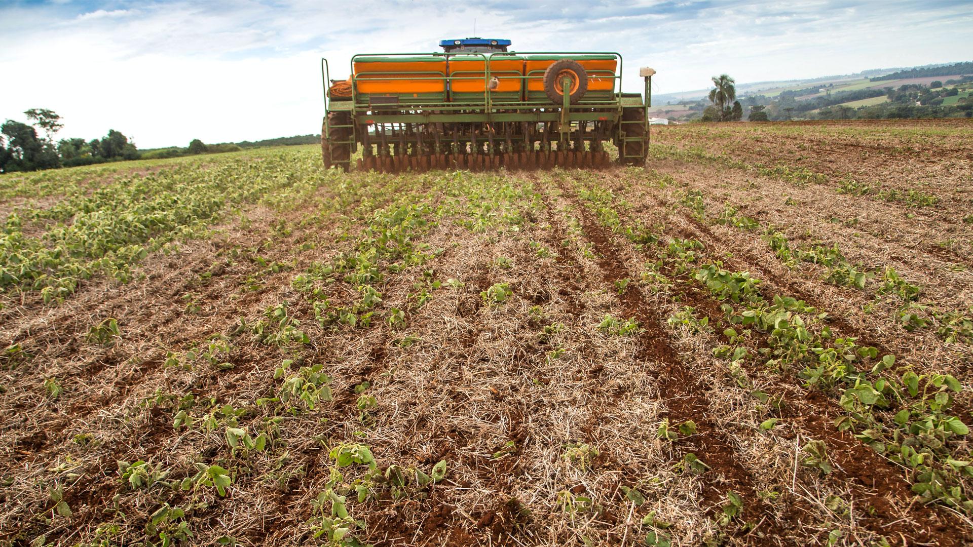 Tecnologias de adubação que enriquecem e aumentam a produtividade de solos tropicais